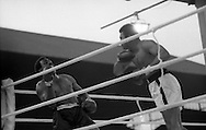 Ali vs Lewis Boxing at Croke Park.19/07/1972<br /> <br /> google image search of Cassius Clay,<br /> google images advanced of Cassius Clay,<br /> google images photos of Cassius Clay,<br /> www.google images of Cassius Clay,<br /> Image of Mohammed Ali in Dublin, Ireland.<br /> Images of Mohammed Ali in Dublin, Ireland.<br /> Picture of Mohammed Ali in Dublin, Ireland.<br /> Pictures of  Mohammed Ali in Dublin, Ireland.v<br /> Pix of Mohammed Ali in Dublin, Ireland.<br /> Pixs of Mohammed Ali in Dublin, Ireland.<br /> Shot of Mohammed Ali in Dublin, Ireland.<br /> Shots of Mohammed Ali in Dublin, Ireland.<br /> photo of  Mohammed Ali in Dublin, Ireland.<br /> <br /> photos of Mohammed Ali in Dublin, Ireland.<br /> google images of Mohammed Ali in Dublin, Ireland.<br /> photo images of Mohammed Ali in Dublin, Ireland.<br /> <br /> google images of Mohammed Ali in Dublin, Ireland.<br /> google images search of Mohammed Ali in Dublin, Ireland.<br /> google image of Mohammed Ali in Dublin, Ireland.<br /> google imags of Mohammed Ali in Dublin, Ireland.<br /> google title images of Mohammed Ali in Dublin, Ireland.<br /> googles images of Mohammed Ali in Dublin, Ireland.<br /> google image search of Mohammed Ali in Dublin, Ireland.<br /> google images advanced of Mohammed Ali in Dublin, Ireland.<br /> google images photos of Mohammed Ali in Dublin, Ireland.<br /> www.google images of Mohammed Ali in Dublin, Ireland.<br /> Image of Mohammed Ali in Dublin Airport, Dublin, Ireland.<br /> Images of Mohammed Ali in Dublin Airport, Dublin, Ireland.<br /> Picture of Mohammed Ali in Dublin Airport, Dublin, Ireland.<br /> Pictures of  Mohammed Ali in Dublin Airport, Dublin, Ireland.v<br /> Pix of Mohammed Ali in Dublin Airport, Dublin, Ireland.<br /> Pixs of Mohammed Ali in Dublin Airport, Dublin, Ireland.<br /> Shot of Mohammed Ali in Dublin Airport, Dublin, Ireland.<br /> Shots of Mohammed Ali in Dublin Airport, Dublin, Ireland.<br /> photo of  Mohammed Ali in Dublin Airport, D