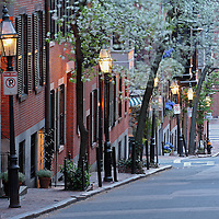Romantic Boston cityscape photography of old colonial brick row houses along Pinckney Street on a beautiful spring evening. Cherry blossom blowing in the wind while the lanterns provide the warm city street night light in Beacon Hill.<br />