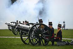 FEB 06 2014 Queens Royal Gun Salute