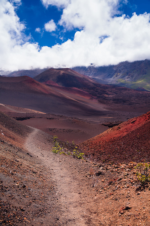 Somewhere among the cinder cones near the crater floor in Haleakala National Park the trail seems to go on forever.