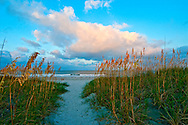Florida, Fernandina Beach, Fort Clinch State, Park Sea Grass, Path