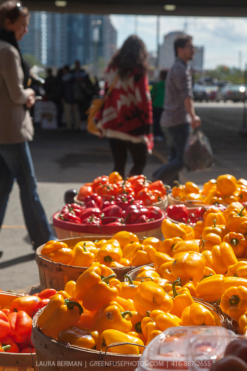 Fresh produce at the farmers market within the Ontario Food Terminal in Toronto, Ontario.