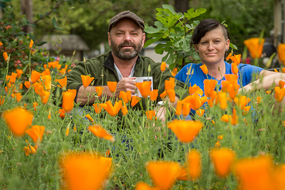 "Coffee Roaster J. Kirk Feiereisen and Actor/body worker, Jen Grigg, sit  among their recent crop of California Poppies in the front yard of their Calistoga home.  ""Each of us had been divorced for about two weeks when we met at the Hydro three years ago...we've been friends since and ""platonic"" roommates just recently.""  ""Three years ago this yard was waist deep in weeds.  Last year I put in the wood chips and this year poppies.""  -J.Kirk Feiereisen"