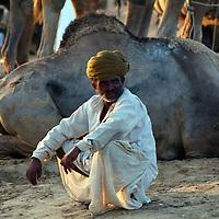 Man at the Camel Fair
