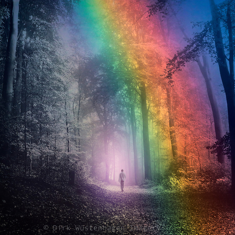 Man walking in a colorful forest - manipulated photograph