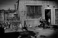 Little girl watches her mother mix coal for for fuel for their home completely surrounded by factories, Shizuishan, Ningxia, China.  The brick of the walls, roof and the yard where the daughter plays are bathed in and coated by coal soot and other toxic industrial particulates.