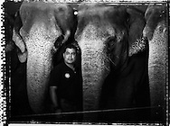 Animal superintendent Alex Vargas poses for a portrait with Elephants Baby(L), Simba, and Toby(R) at the Ringling Brothers Barnum and Bailey Circus in New York, April 3, 2007.
