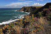The South West Coast Path near St. Genny's in northern Cornwall