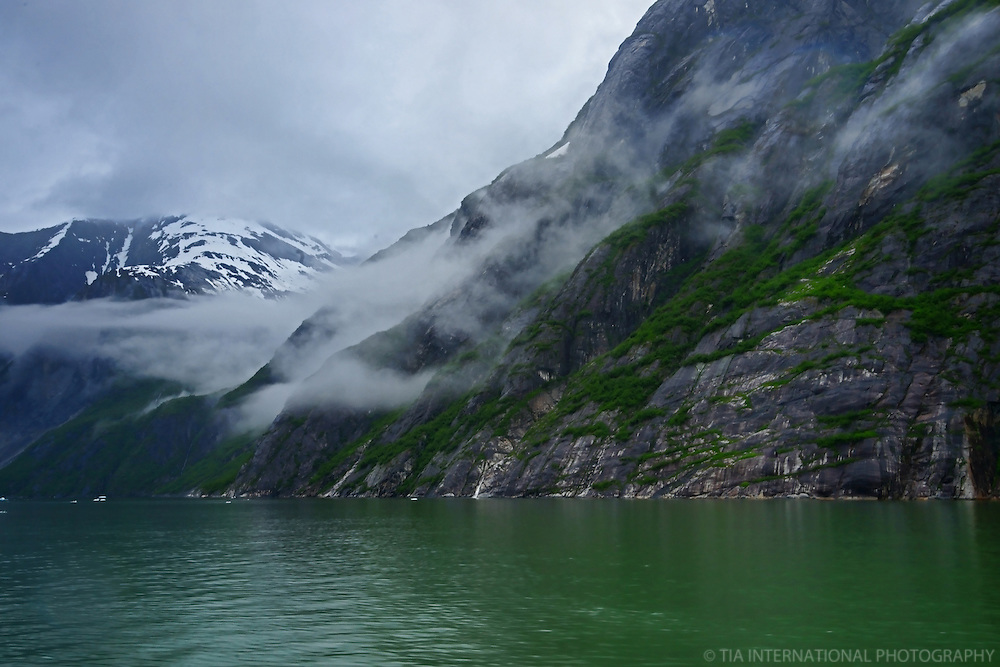 Foggy Shores, Tracy Arm Fjord