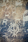 """Bighorn sheep and a buck (or possibly elk bull) along with other drawings are etched into a rock on the """"Temani Pesh-wa"""" trail (also """"written on rock"""" trail) in Columbia Hills State Park on the Washington Side of the Columbia River Gorge. This petroglyph was removed from the famous """"Petroglyoh Canyon"""" along the Columbia River before it was flooded by construction of The Dalles Dam in 1957. The Army Corps Of Engineers stored the rock art until 2004 when Temani Pesh-wa trail was built."""