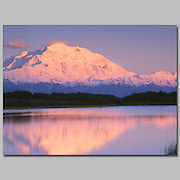 Alaska. Denali NP. Mt McKinley(20,320) the tallest mountain in North America, Wonder Lake with evening alpenglow.