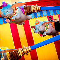LAKE BUENA VISTA, FL -- November 17, 2012 -- Families ride the updated Dumbo The Flying Elephant ride in the New Fantasyland expansion at Walt Disney World in Lake Buena Vista, Florida on Saturday, November 17, 2012.  The New Fantasyland expansion is the largest since the park's opening and features Enchanted Forest with The Little Mermaid and Beauty and the Beast themed-attractions plus Storybook Circus , which puts a Disney spin on the American circus.(PHOTO / CHIP LITHERLAND for TIME)
