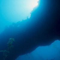 A SCUBA diver swims beneath and underwater arch in the Channel Islands National Park, California. (Model Released)