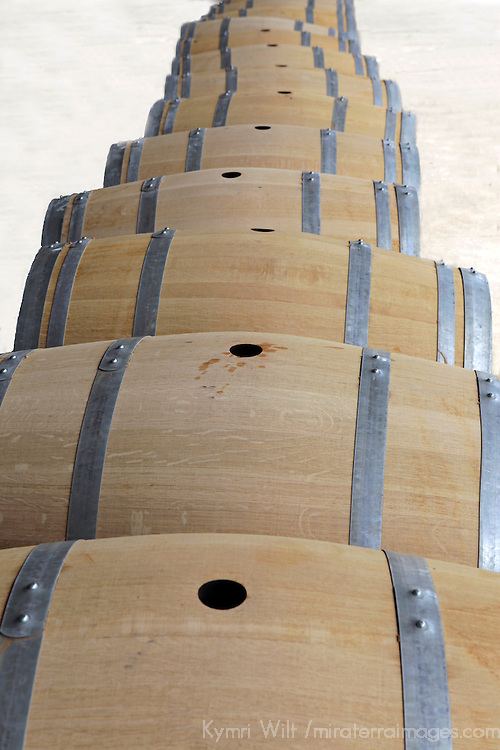South America, Chile, Santiago. Wine barrels at Santa Rita Winery.