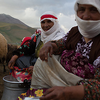 In Goruntas, a village inland from Lake Van in eastern Turkey, 22 women milk over 1,000 sheep and goats twice a day during the warm months, when the region's famous otlu peyniri (herbed cheese) is made.