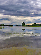 A rice field in  the country side nearby the small town of Scalenghe in Piedmont, Italy, under some storm treathening skies. Stitched from five horizontal frames.