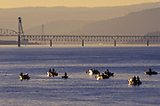 Image of sport fishing on the Columbia River near Hood River, Oregon, Pacific Northwest