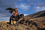 Kazakh &amp; Golden eagle<br /> (Aquila chrysaetos)<br /> eagles used for hunting<br /> Western Mongolia