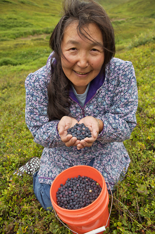 Gladys Johnson picks blueberries at Arctic Valley, Anchorage, AK - August 3: Photo by Clark James Mishler/Getty Images/Julia Galleway, London Office for First Magazine