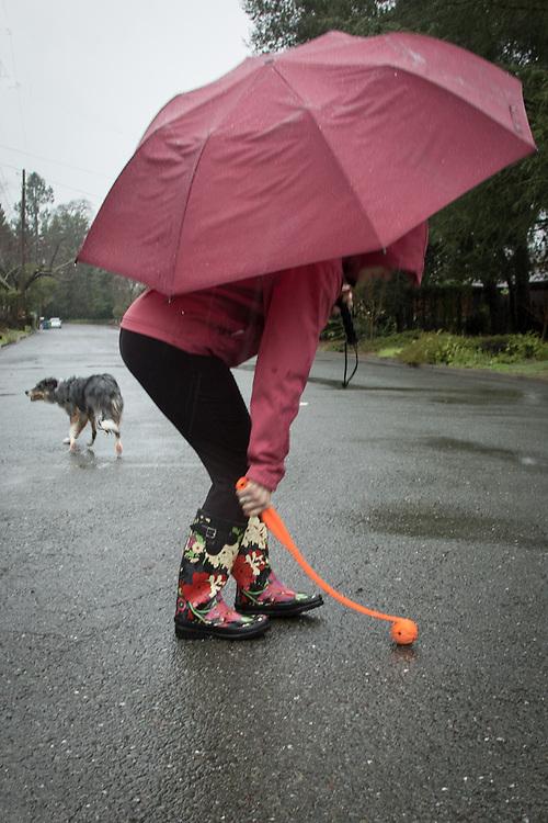 Mitzi Mishler runs her dog, Molly, on a very rainy morning in Calistoga
