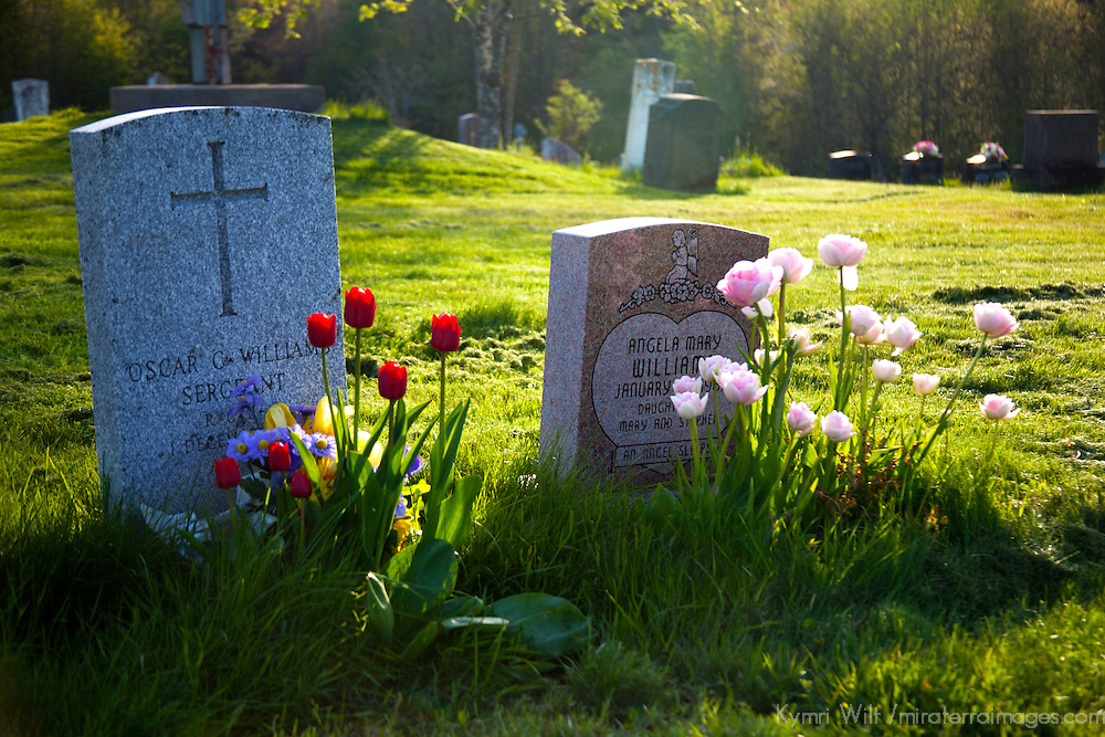 North America, Canada, Nova Scotia, Guysborough. Tombstones and flowers at the Guysborough Cemetery.