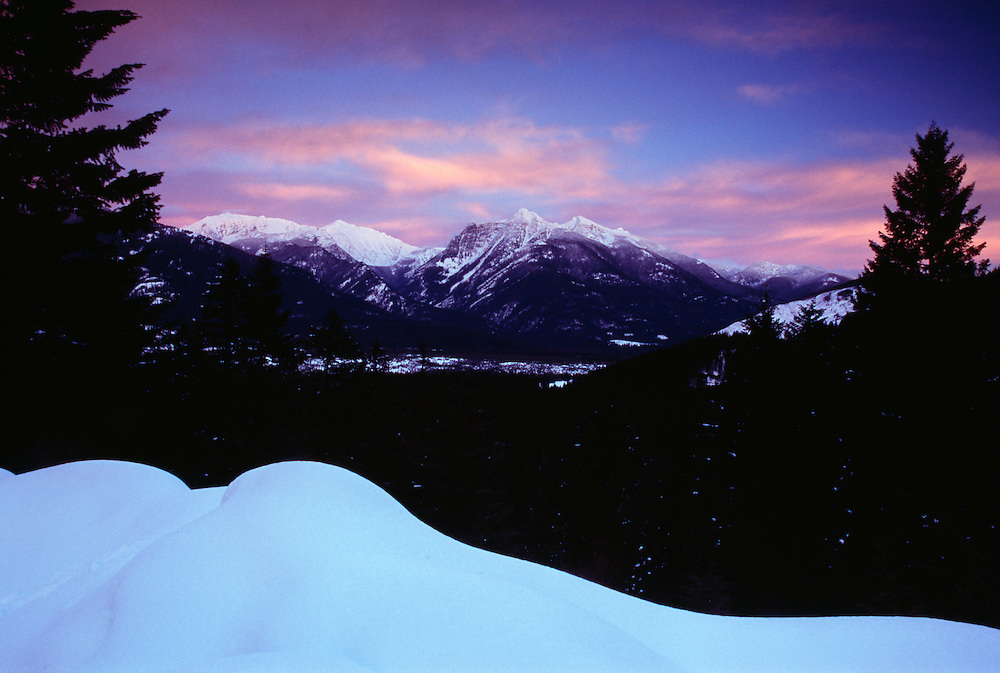 Montana, silhouette of trees with snowcapped Cabinet Mountains