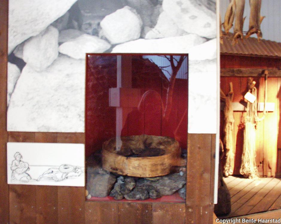 I 1976 fikk Nordlandsmuseet ei runebomme i gave. Runebomma var funnet på 50-tallet, og hadde i mellomtida vært pynt på peishylla hos giveren. Da runebomma ble funnet var der et skinn med røde figurer på den, men dette skinnet var blitt borte. Tromsø Museum stadfestet at runebomma var ekte, og at den var ei vinkelramme-tromme, som fra før av bare var kjent i to eksemplarer fra Finland.