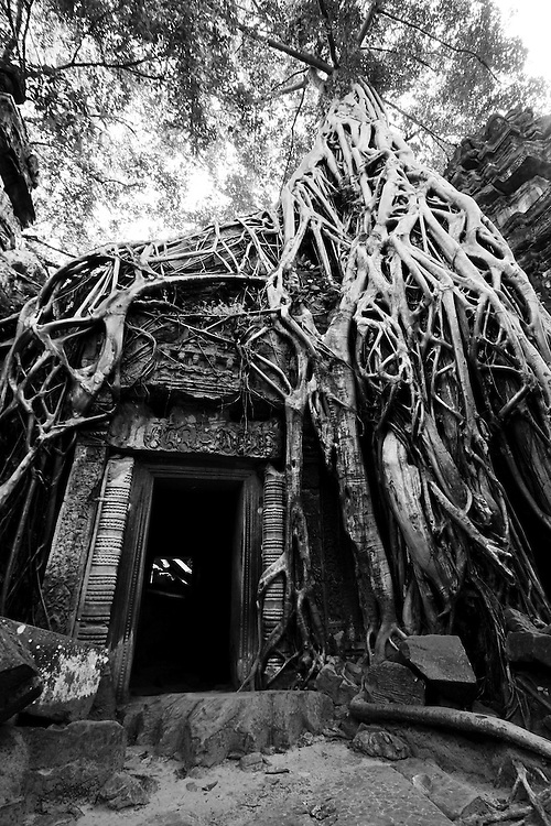 In 1979, once they were ousted from political power, they  holed up in temples  as stronghold.