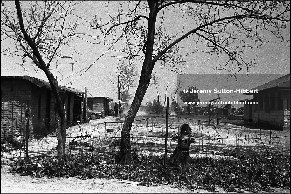 SINTESTI, ROMANIA. MAY 1997..©JEREMY SUTTON-HIBBERT 2000..TEL./FAX. +44-141-649-2912..TEL. +44-7831-138817.