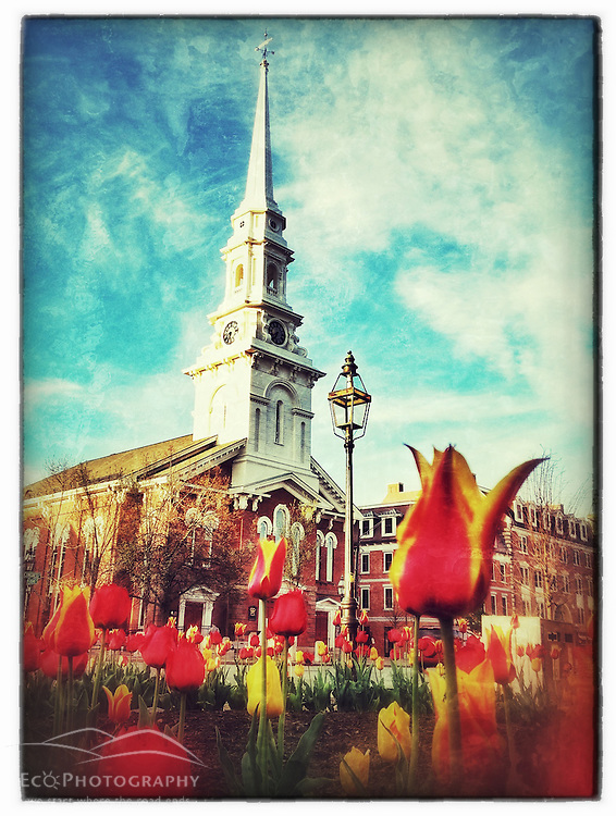 "Tulips and the North Church in Market Square, Portsmouth, New Hampshire. iPhone photo - suitable for print reproduction up to 8"" x 12""."