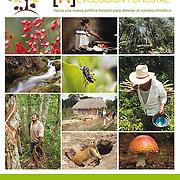 [R] evolución Forestal. Greenpeace México