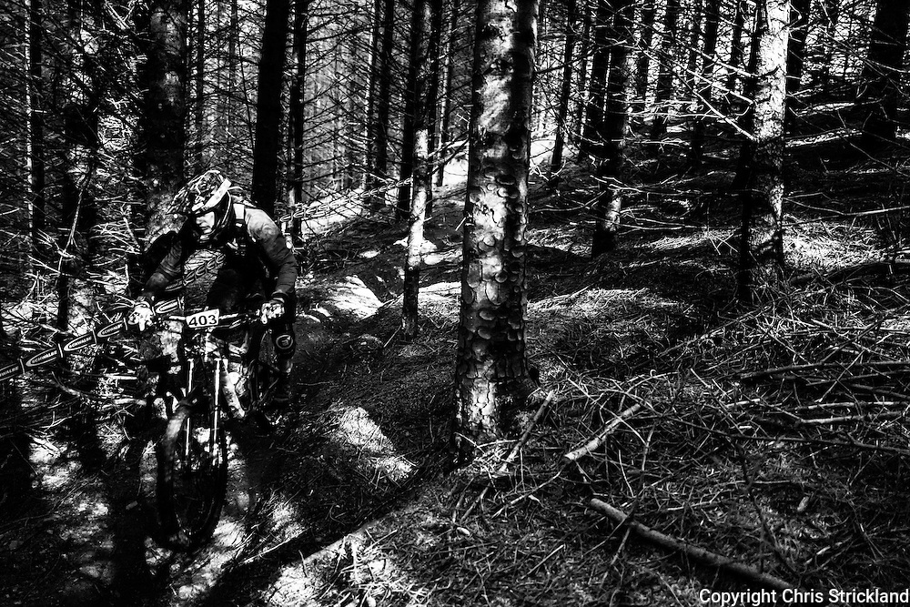 Innerleithen, Peebles, Scotland, UK. 8th October 2016. Mountain bikers compete at the British Enduro Series in Caberston forest in the Tweed Valley.