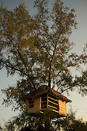 A tree house in Koh Rong Island, Kingdom of Cambodia. PHOTO TIAGO MIRANDA