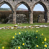 Europe, United Kingdom, Wales. Cymer Abbey in Gwynedd, a Welsh Historic Monument of CADW.