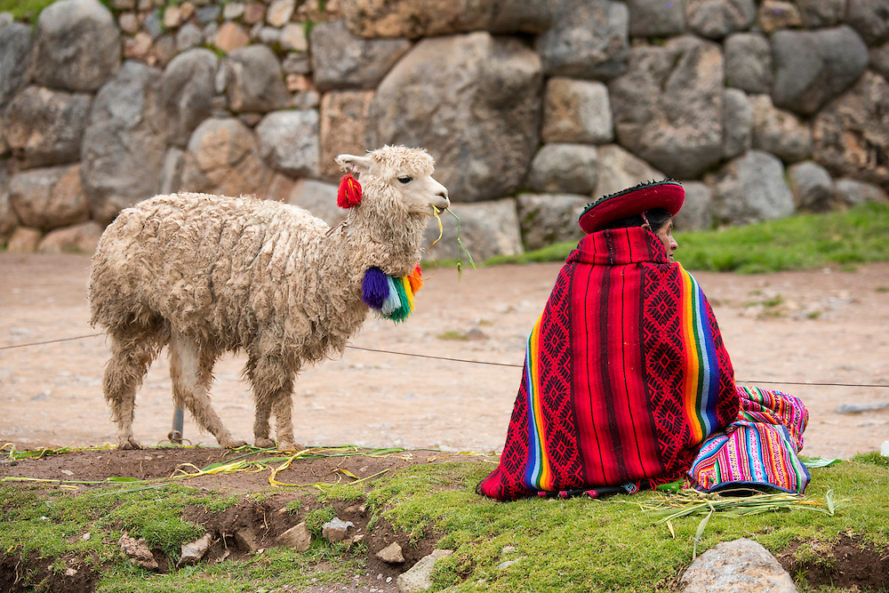 South America, Andes, Peru,Saksaywaman
