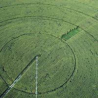 Circular pivot or king spin irrigation system, corn crops. Farmlands close to Sarin?ena, Monegros, Huesca, Spain.