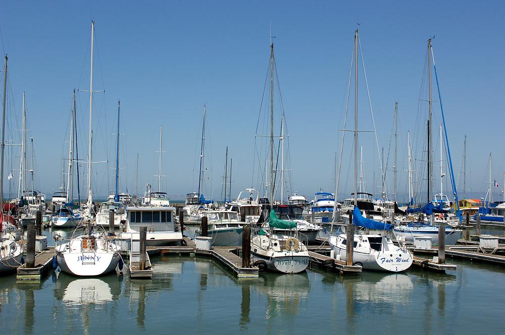 Sailboats at Piers 39, San Francisco Bay, San Francisco, California, United States of America