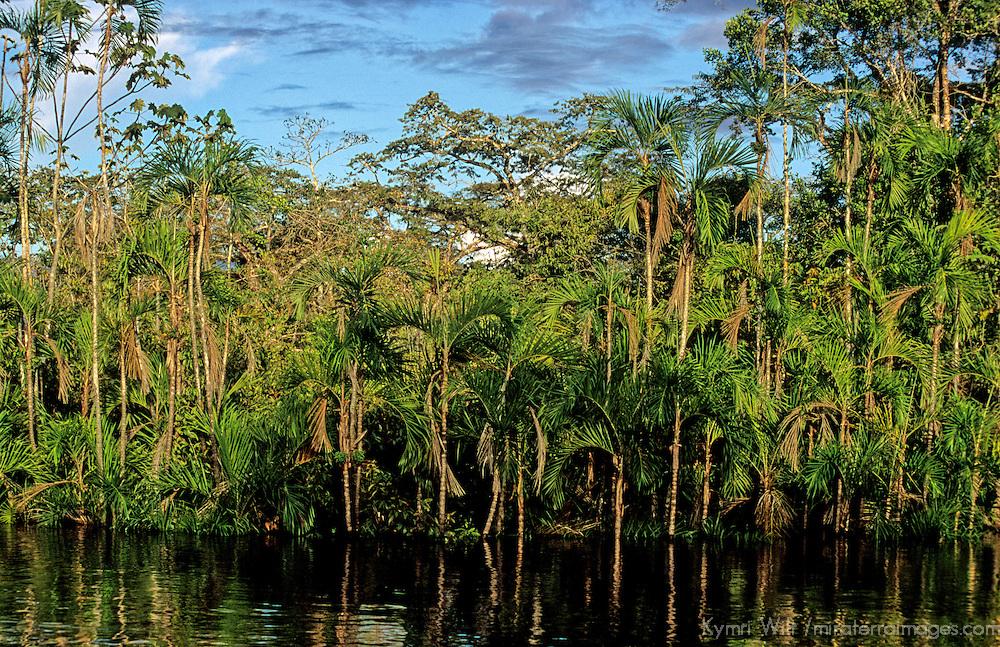 South America, Peru, Amazon River.