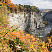 """In Letchworth State Park, renowned as the """"Grand Canyon of the East,"""" the Genesee River roars northeast through a gorge over three major waterfalls between cliffs as high as 550 feet, surrounded by diverse forests which turn bright fall colors in the last three weeks of October. The large park stretches 17 miles between Portageville and Mount Morris in the state of New York, USA. Drive or hike to many scenic viewpoints along the west side of the gorge. The best walk is along Gorge Trail #1 above Portage Canyon from Lower Genesee Falls (70 ft high), to Inspiration Point, to Middle Genesee Falls (tallest, 107 ft), to Upper Genesee Falls (70 ft high). High above Upper Falls is the railroad trestle of Portageville Bridge, built in 1875, to be replaced 2015-2016. Geologic history: in the Devonian Period (360 to 420 million years ago), sediments from the ancestral Appalachian mountains eroded into an ancient inland sea and became the bedrock (mostly shales with some layers of limestone and sandstone plus marine fossils) now exposed in the gorge. Genesee River Gorge is very young, as it was cut after the last continental glacier diverted the river only 10,000 years ago. The native Seneca people were largely forced out after the American Revolutionary War, as they had been allies of the defeated British. Letchworth's huge campground has 270 generously-spaced electric sites. The panorama was stitched from 2 overlapping photos."""