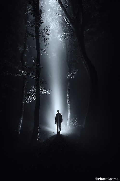 Alien at night in forest with ray of light