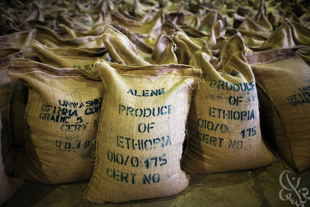 100 kilo bags of export quality Ethiopian green coffee beans sit ready for export in the giant warehouse of the Keffa Export Coffee Processing Plant February 21, 2007 in Addis Ababa.  Ethiopia exports more than 120,000 metric tons of green coffee beans per year, and one in four Ethiopians is employed within the coffee business.