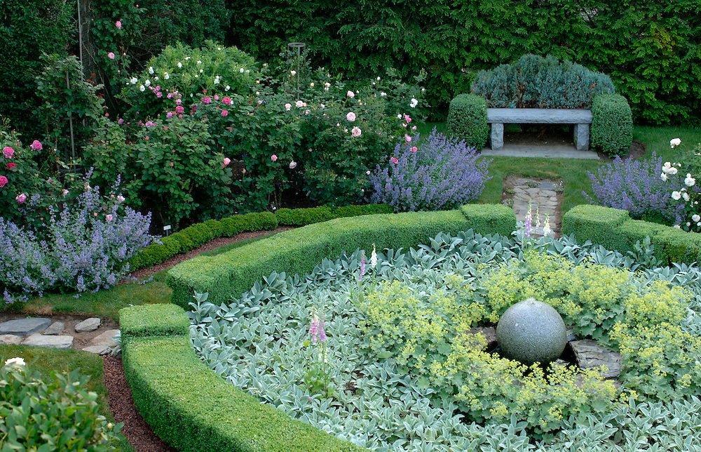 Landscaping With Boxwoods And Roses : Formal boxwood and rose garden stacy bass photography