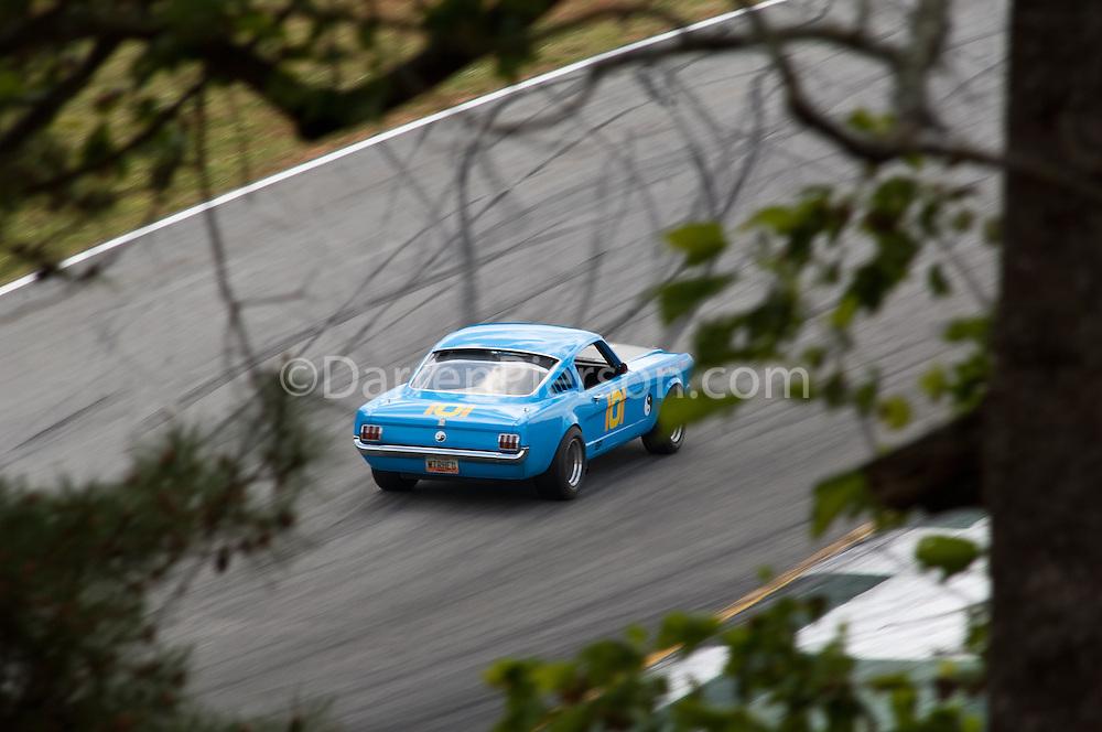 #101 '65 Mustang: Tim Holland