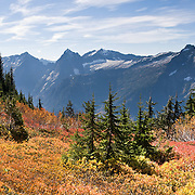 From Mount Dickerman, view Del Campo, Morning Star, Sperry, and Vesper Peaks (left to right), Big Four Mountain, and fall foliage colors in Mount  Baker-Snoqualmie National Forest. Hike Mount Dickerman Trail #710 from the Mountain Loop Highway, east of Verlot Visitor Center, Washington, USA. Panorama stitched from 2 images.