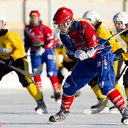 20110305, Damallsvenskan i bandy. Kareby IS-Västerstrands AIK