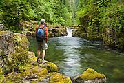 Hiker on Brice Creek Trail at pool below waterfall and jumping rock; Umpqua National Forest, Oregon.