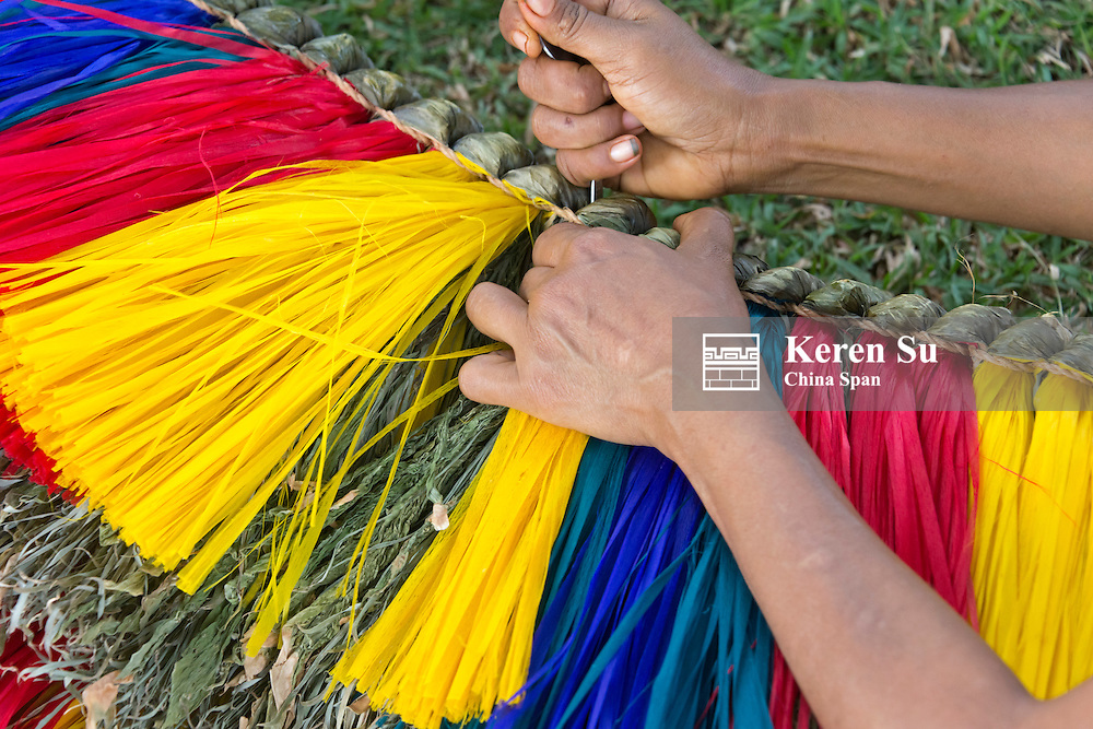 Making grass skirt at Yap Day Festival, Yap Island, Federated States of Micronesia