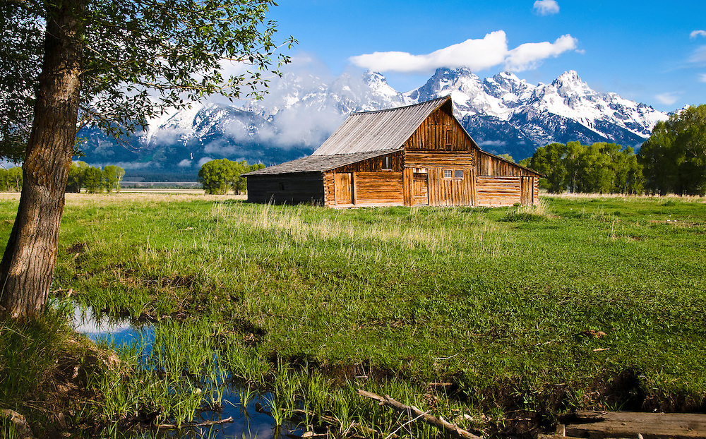 Taken during the early morning's soft light with the Tetons Mountain Range in the background. Grand Tetons National Park, Wyoming.