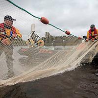 SEPA Marine Environment Study