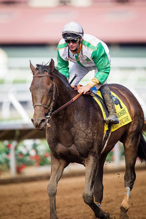 "July 26 2015: Wild Dude with Flavian Prat up wins the Bing Crosby Stakes a Breeders' Cup ""Win and You're In"" race at Del Mar Race Course in Del Mar CA. Alex Evers/ESW/CSM"